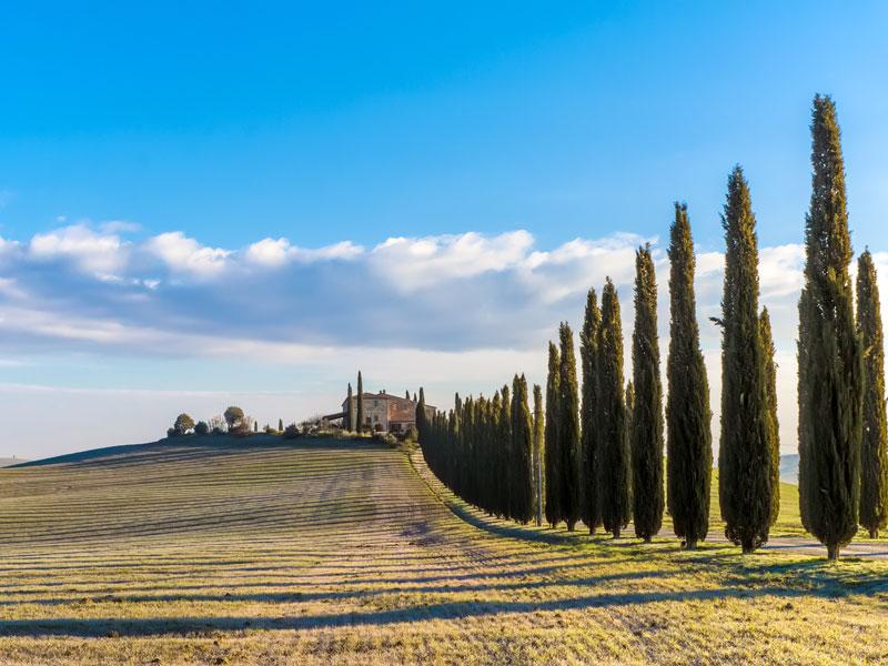 Singlereisen Toskana- Singleurlaub Italien