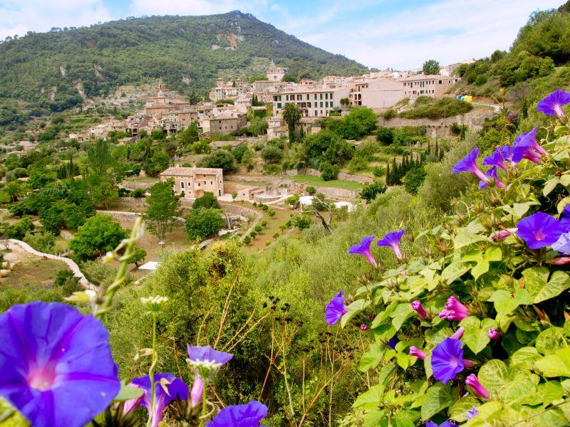 Partnersuche Kostenlos Mallorca - zavodstandard