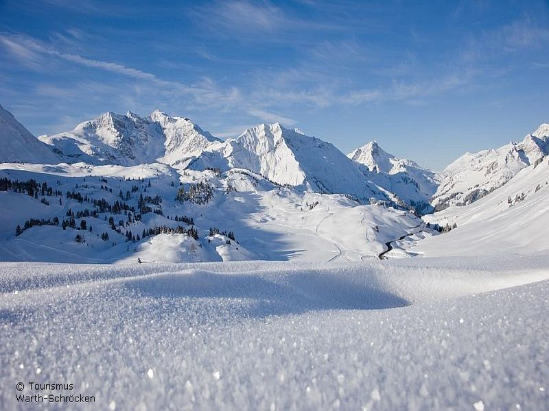 situated on a steeply sloping site in vorarlberg austria this single ...